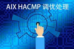 案例   AIX HACMP 调优处理一例